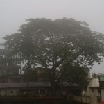 Misty Morning at Kamakhya Temple